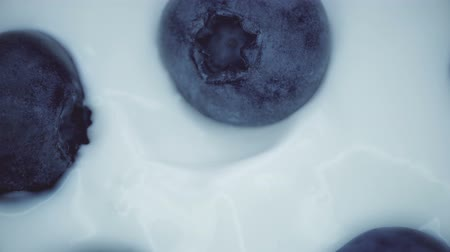 jagoda : Closeup Blueberries in natural yogurt rotating. Seamless looping, 4k. Fruit background.