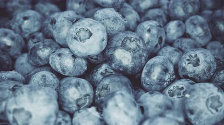 jagody : Closeup Blueberries rotating. Seamless looping, 4k. Fruit background.