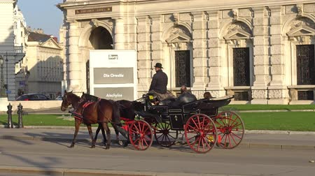 avusturya : Vienna, Austria - November 2017: Horse and carriage carrying tourists visiting Vienna. Vienna Wien is the capital and largest city of Austria, and one of the 9 states of Austria.