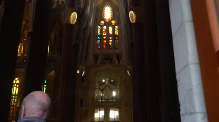 divino : Barcelona, Spain - Circa January 2019: Sagrada Familia Interior. Stock Footage
