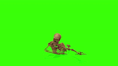 lidércnyomás : Crawling Attacking skeleton on a green background. Halloween concept.