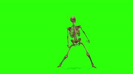 lidércnyomás : Dancing skeletons on a green screen background. Halloween concept.