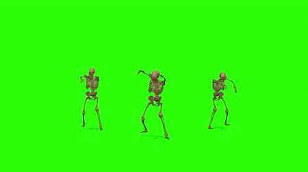 öfkeli : Attacking skeletons on a green screen background. Halloween concept. Stok Video