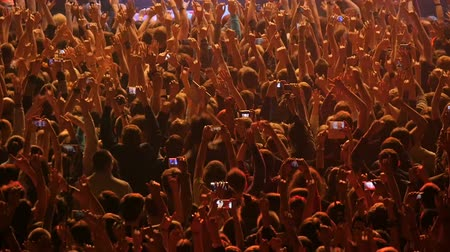 rock music : A crowd of people at a rock concert. Fans gather in front of the performance of a rock band.
