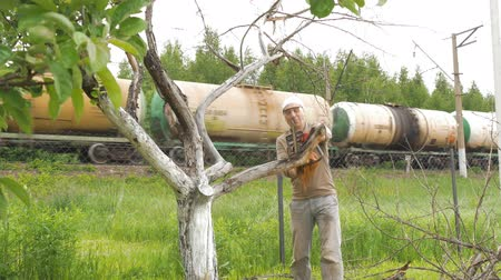 lumberjack : A man cuts off branches on a tree that is withered. In the background, there is a train carrying a tank of oil products. Stock Footage