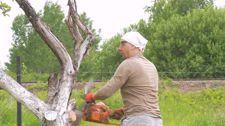 felling : A man cuts a chain saw tree near his house. Green trees in the background. Removing dried branches. Stock Footage