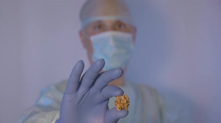 antimicrobial : The doctor demonstrates that walnut is very healthy. Like other vitamins. Stock Footage