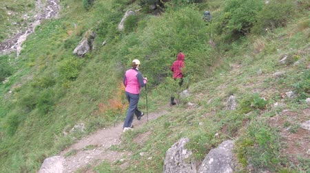 non kentsel : Father, mother and son travel through the mountains. They are engaged in a healthy lifestyle. Stok Video