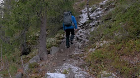 wspinaczka górska : Traveler with a backpack climbs up the mountain path. He explores new routes for himself. Active travel and healthy life.