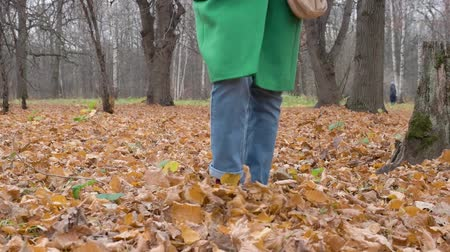 Autumn Womens feet in blue jeans Burgundy boots walk on yellow leaves in Park Wideo
