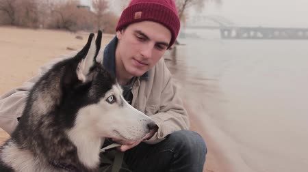 huskies : Man with his dog sitting on a beach close up Stock Footage
