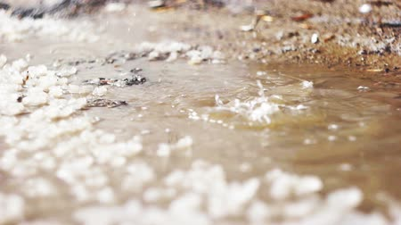 snowbreak : Spring puddle with pices of ice and dropping water. Stock Footage
