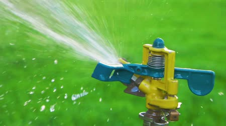 cultivar : Garden sprinkler slow motion side view Vídeos