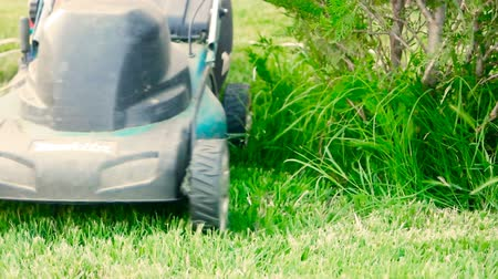 mow : Astrakhan, Russia, 27 of May 2018: Makita-brand Lawnmower at work. Lawn mower cutting green grass in backyard. Gardening background. Stock Footage
