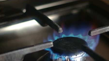 gas hob : Closeup of working natural gas stove burner, copyspace Stock Footage