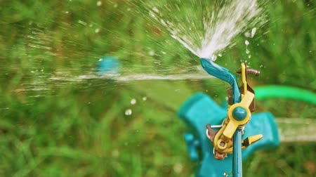окропляет : Top view of garden sprinkler spreading fresh water over the green grass in slomo