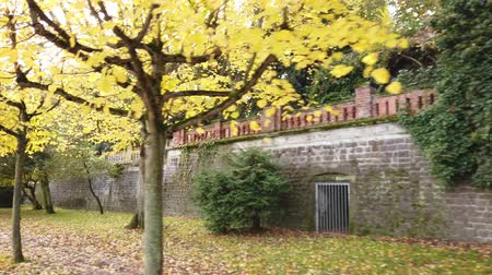 Bonn Germany, 06 November 2019: riding on Rhine embankment along the park wall with lonely pedestrians aside. Sun blinking in branches of yellow trees 4k 50fps clip