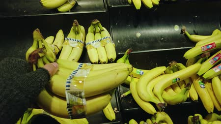 banan : Bonn, Germany - 14 of Dec., 2019: interior shot of REWE supermarket in Bonn POV view. A man in the fingerless gloves picks bananas and puts a bunch of bananas in a supermarket basket in 60fps slow motion POV view