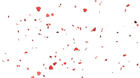 3d animation. Floating and falling hearts isolated on white background.
