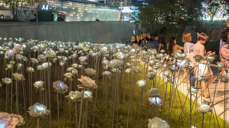 délre : Dongdaemun Design Plaza in Seoul, South Korea with LED lit roses. tilt up