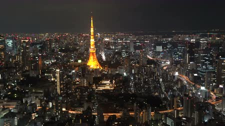 bóia : Cinematic footage of sunset night scene at Tokyo city, aerial view.