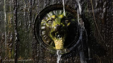 sputter : Fountain with  lion head as a gargoyle