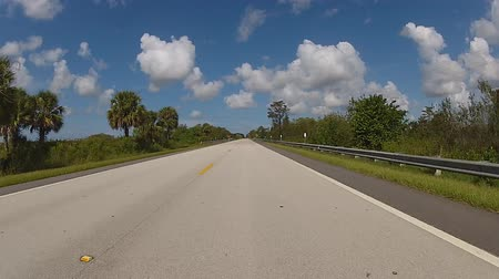 beach panorama : Panoramic real-time view of road in Florida near Everglades National Park