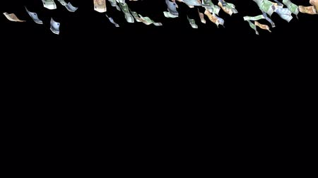 richness : Falling Euro Banknotes with alpha channel(15 sec 15sec) Stock Footage
