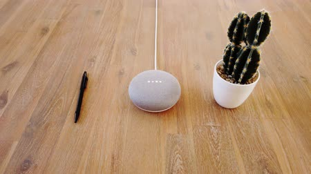 Starting Smart Home Mini Voice Assistant - Pen and Cactus
