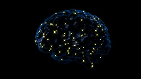 Brain activity Wideo