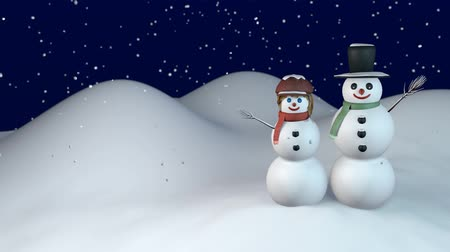 Winter night with snowman and snow-woman Wideo