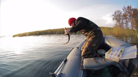 Man in a boat fishing on the lake. Releases small pike