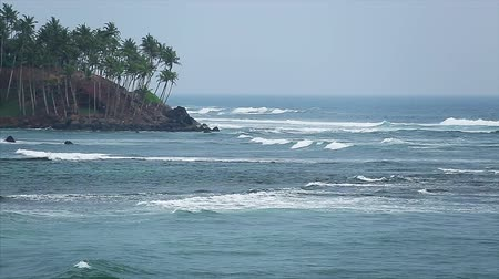 Ocean waves breaking on the coast. Sri Lanka