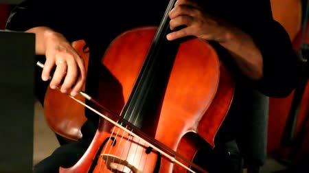 cselló : close-up view on violoncello in orchestra