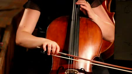 cultuur : close-up op cello in het orkest Stockvideo