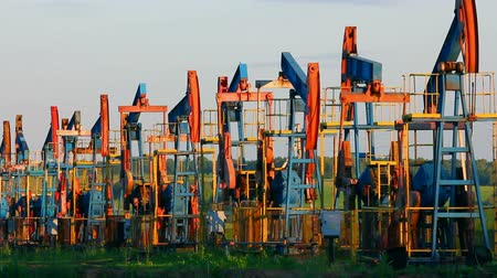 pompki : row of many working oil pumps