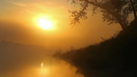 natura : timelapse landscape with sunrise over river