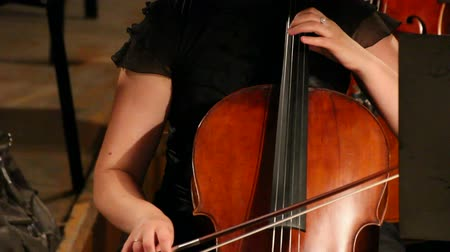 cselló : close-up view on violoncello in orchestra - timelapse