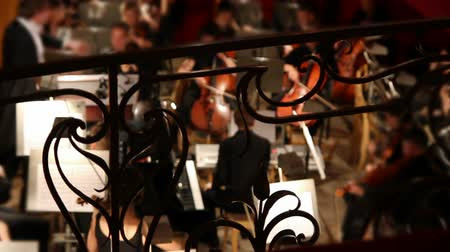 harmonia : view on orchestra in theatre