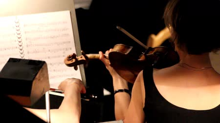 симфония : woman from behind playing on violin in orchestra Стоковые видеозаписи