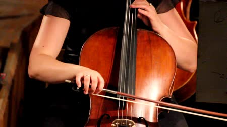 sicim : close-up view on violoncello in orchestra