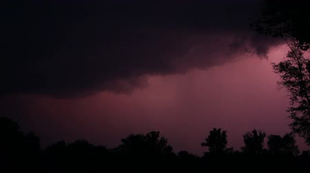 dzsungel : Night storm near river and great zippers