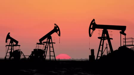 pompki : working oil pumps silhouette against timelapse sunrise