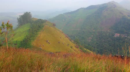 plantio : mountain landscape with road in Munnar Kerala India