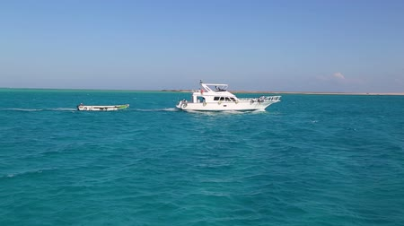 żaglówka : white yacht sailing the red sea - egypt Wideo