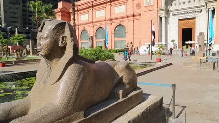 kahire : CAIRO, EGYPT - DECEMBER 01, 2014: the Sphinx at Egyptian Museum in Cairo, Egypt, Africa
