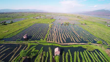 mianmar : Flying over floating gardens on Inle Lake, Myanmar (Burma), 4k Stock mozgókép