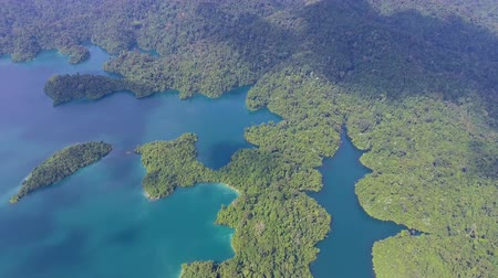 surat : Aerial tilt view on Cheow Lan Lake, Khao Sok National Park in southern Thailand Stock Footage