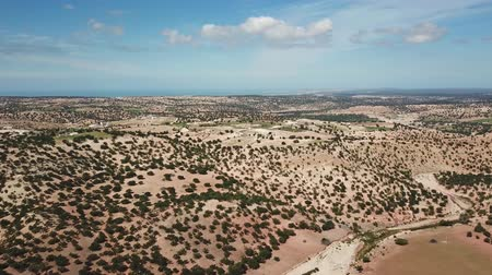 atlasz : Aerial panorama of mountains with argan trees in their natural habitat - in Morocco, 4k
