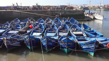 Blue fishing boats in the port of Essaouira, Morocco, 4k